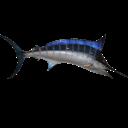 :swordfish: